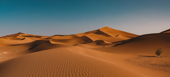 Which Is the Driest Desert in the World