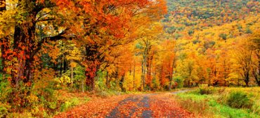 The Best Places to See Fall Foliage in the United States