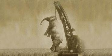 Elephant trial