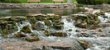 Interesting Facts on Giant Springs
