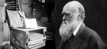 Which Scientist Invented the Rolling Office Chair?