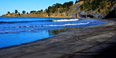 Black Sands Beach in Whitethorn, California
