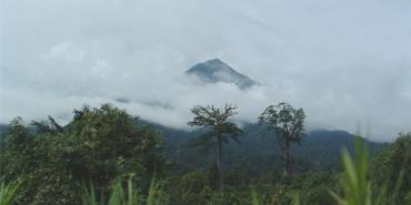 Debundscha, Cameroon