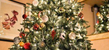 Are Christmas Trees Pagan?