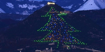Mount Ingino Tree, Gubbio, Italy
