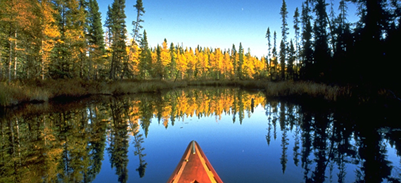Get Wild with Our Interesting Voyageurs National Park Trivia