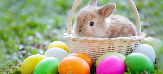 All about History of Easter Eggs