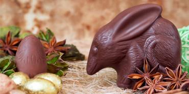 Easter Bilby
