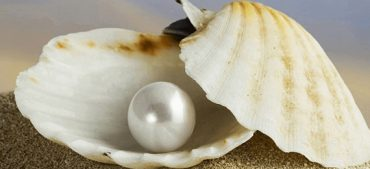Surprising Facts about Pearls That You May Not Know