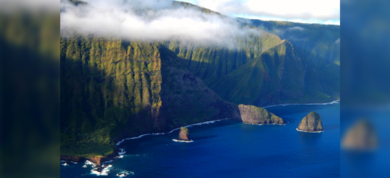Can You Score 15/15 in This Hawaii Sea Cliffs Quiz?