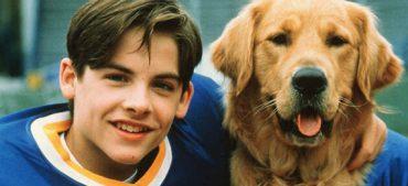 Famous Animal Actors 101