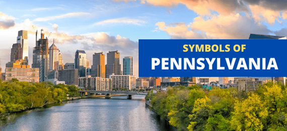 Everything About the Symbols of Pennsylvania