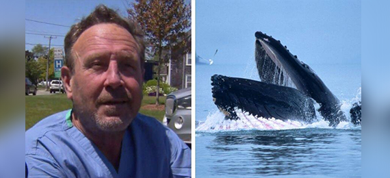 Massachusetts Lobster Diver Gets Swallowed Alive by a Whale
