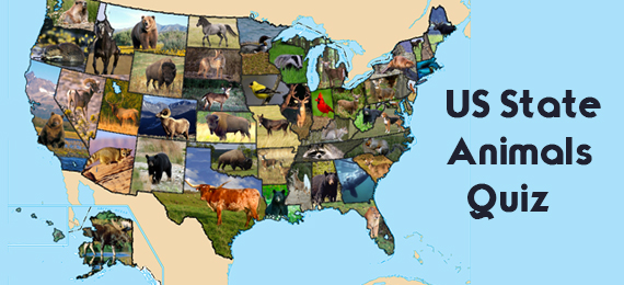 State Animal of US State