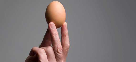 Get to Know Which Vitamin Is Absent in an Egg