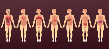 31 Weirdest and Wackiest Facts About the Human Body