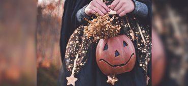 Best Halloween Movies for Your Halloween Movie Night